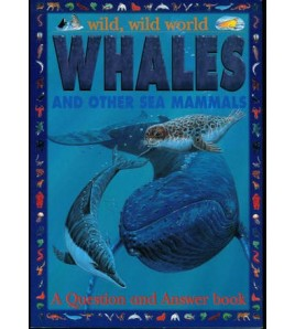 Whales And Other Sea Mammals