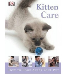 Kitten Care (How to Look...