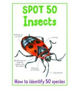 Spot 50 Insects