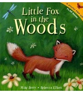 Little Fox in the Woods....