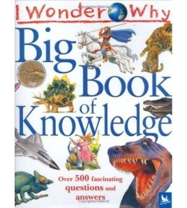 Big Book of Knowledge: Over...
