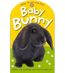 Baby Bunny (Baby Touch and...