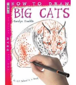 How To Draw Big Cats (You...