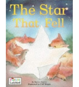 The Star That Fell