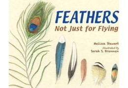 Feathers: Not Just for Flying by Melissa Stewart.
